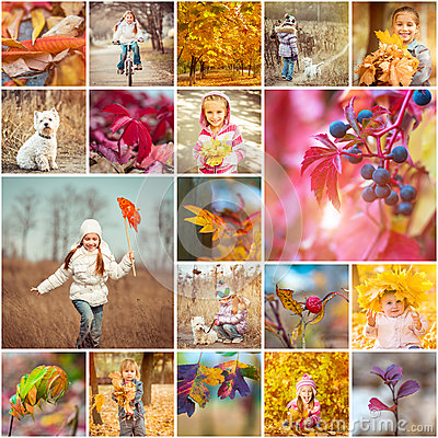 Free Autumn Theme Stock Photo - 46627450