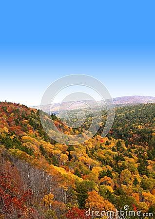 Autumn time in mountains