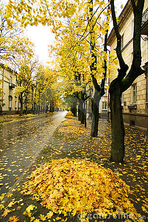 Autumn in town