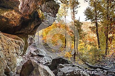 Autumn Trail
