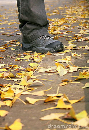 Autumn Travel Royalty Free Stock Images - Image: 15876129