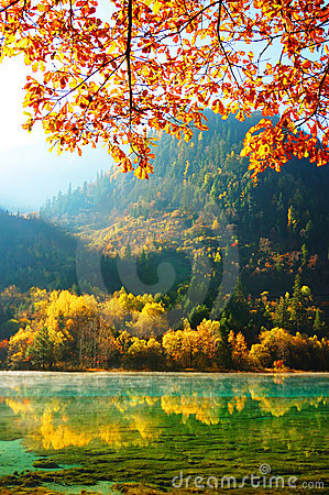 Free Autumn Tree And Lake In Jiuzhaigou Royalty Free Stock Photo - 13890845