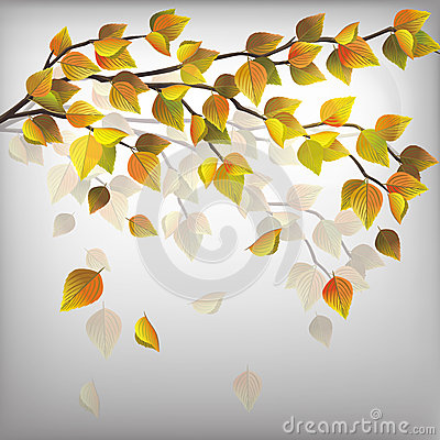Autumn tree with flying leaves, nature background