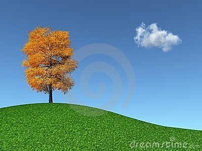 Autumn Tree on a grassy hill
