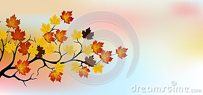 Autumn tree with sky background