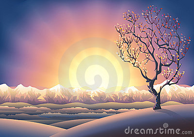 Autumn tree sunset landscape