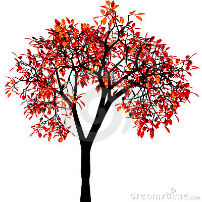 Autumn tree. Vector.