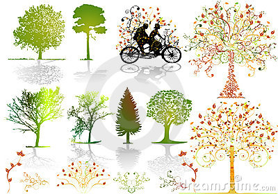 Autumn trees - vector