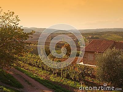 Autumn Tuscany landscape