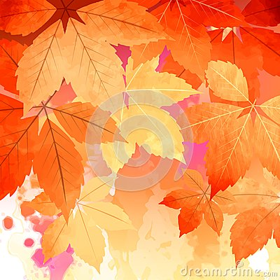 Free Autumn Vector Watercolor Fall Leaves Stock Image - 43529361