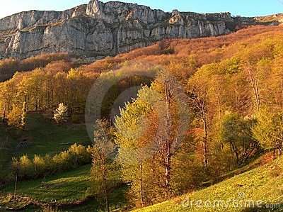 Autumn view