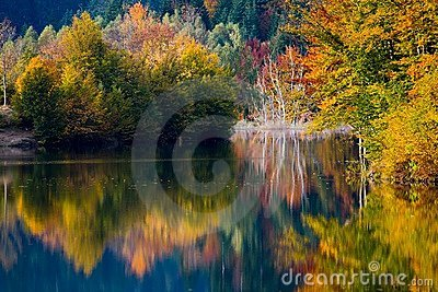 Autumn vivid colors on lake