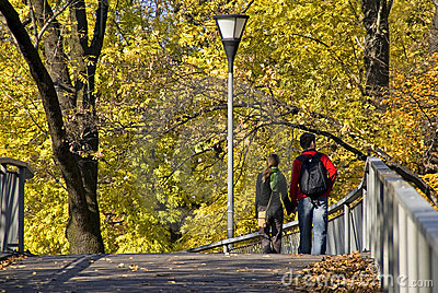 Autumn walk in city park