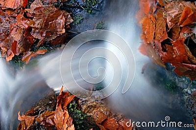 Autumn waterfall in bohemia
