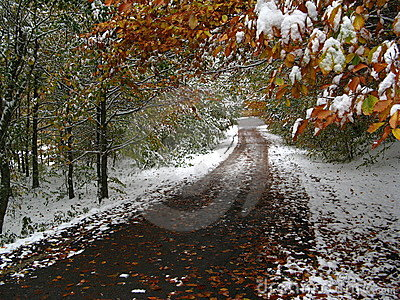 Autumn and winter in the same time on a path