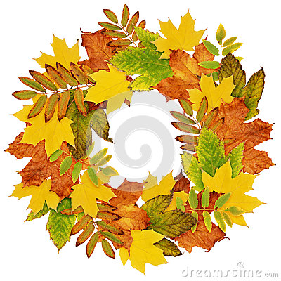 Free Autumn Wreath From Dry Colored Leaves Royalty Free Stock Images - 98242649