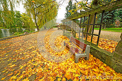 Autumnal alley in the park