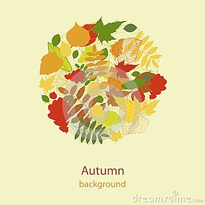 Autumnal bright leaf background vector