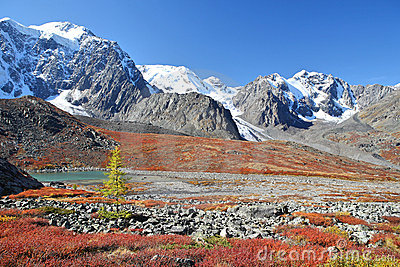 Autumnal colors in Altai Mountains