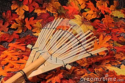Autumnal decor.