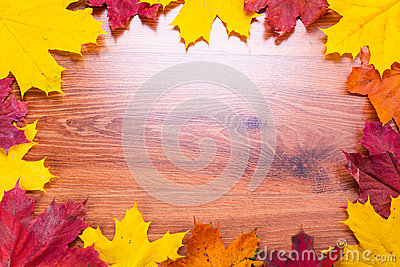 Autumnal frame with leaves