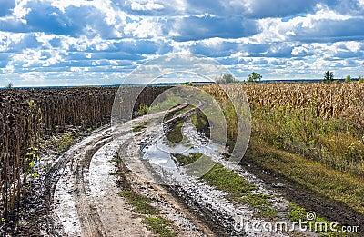 Autumnal landscape in Ukraine