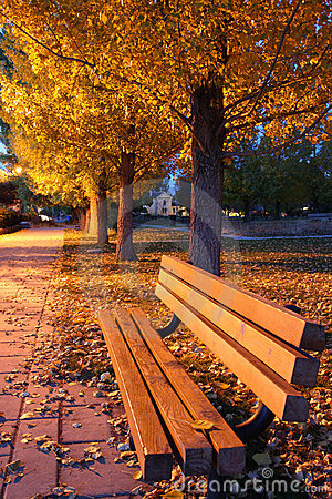 Free Autumnal Park Royalty Free Stock Images - 11643389
