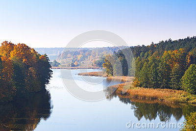 Autumnal scenery of forest at the lake