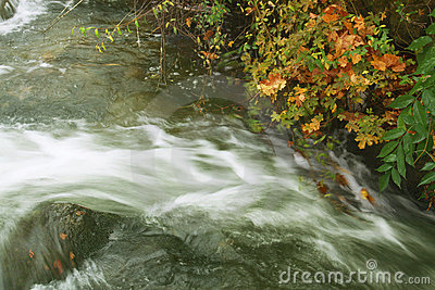 Autumnal waters