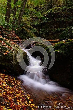 Autunm rushing water
