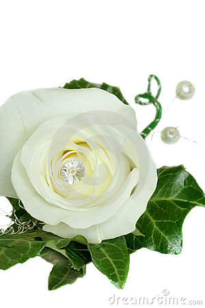 Avalanche Rose and Ivy Wedding Button