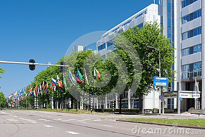 Avenue of flags in Hague, Netherlands Editorial Photography