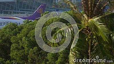 Avião de parede se aproximando e pousando video estoque