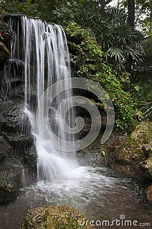 Aviary Falls - Rainbow Springs State Park