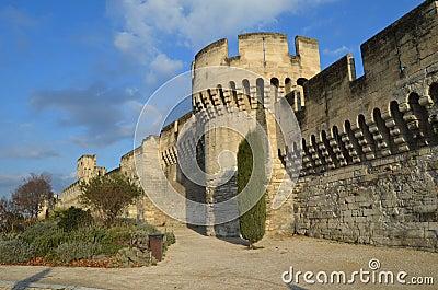 Avignon famous walls