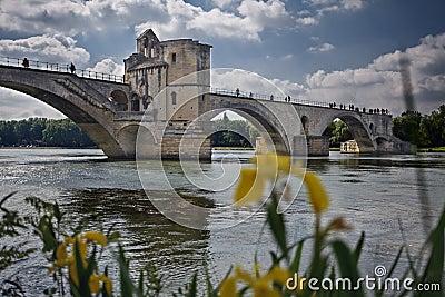 Avignon s bridge