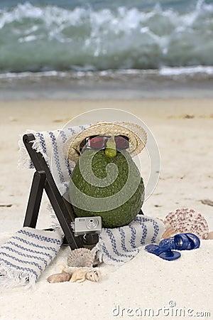 Avocado in Beach Chair