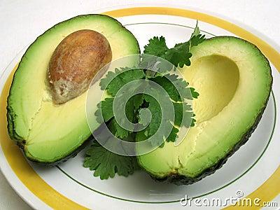 Avocado and Cilantro