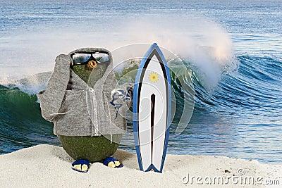 Avocado Surfer