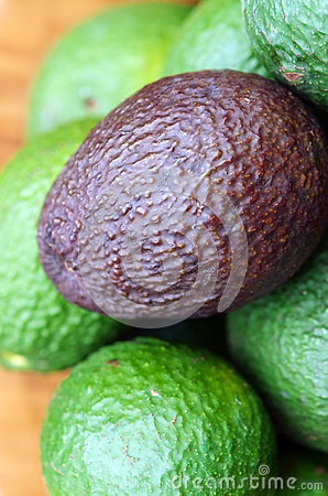 Free Avocados Royalty Free Stock Image - 31340126