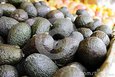 Avocados on display at market