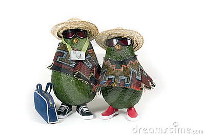 Avocados - Travelers