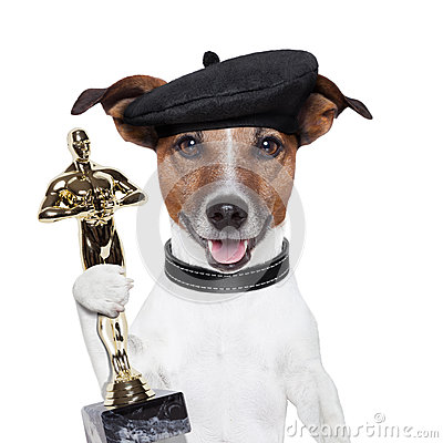 Free Award Winner Dog Royalty Free Stock Photo - 28155295