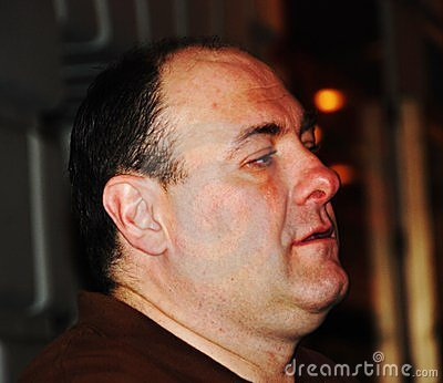 Award winning actor James Gandolfini Editorial Image
