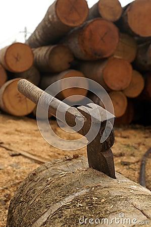 An ax