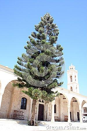 Ayia Napa Cyprus
