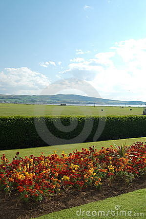 Ayr scotland landscape flowers and view