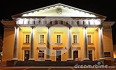 Ayuntamiento de Vilnius en la noche (Lituania)
