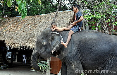 Ayutthaya, Thailand: Father & Son Riding Elephant Editorial Image