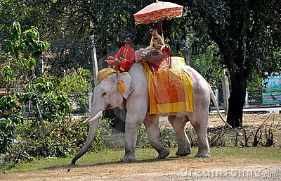 Ayutthaya, Thailand: People Riding an Elephant Editorial Photography